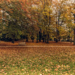 Merna-El-Mohasel-Stadtpark-Graz